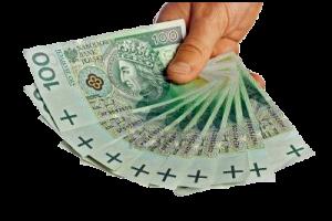 pieniadze przez internet - baknoty 100 zł ręka
