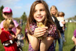 Świąteczne zdjęcie. Dziewczynka trzymająca kurczaczka.